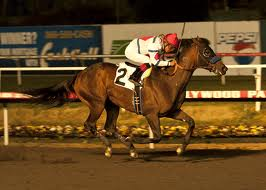 Racing Aptitude streaked to a freakish win under the lights in his only try at Hollywood Park.