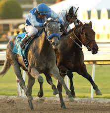 Doinghardtimeagain digs in on the inside to finish second in the Cal Cup Juvenile Fillies.