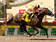 The Factor looks to dazzle Del Mar race goers again in today's Bing Crosby (Grade I).